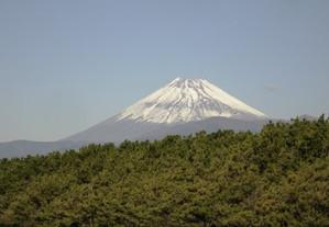 20131124_fuji